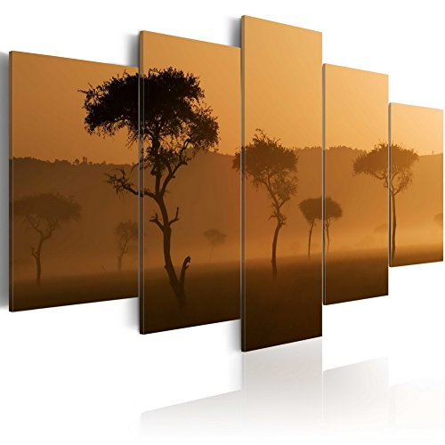 Konda Art Landscape Canvas Wall Art African Sunset Picture Painting Modern Home Decoration Framed Print Artworks for living room bedroom Ready to hang (Fog over a savannah, 40