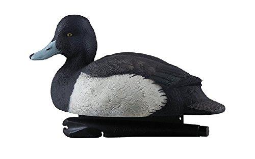 Avian-X Foam Filled Blue Bills Duck Decoys AVX8098