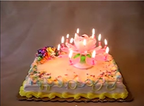 BdayCandle Magical Happy Birthday Candle Sparkling Singing