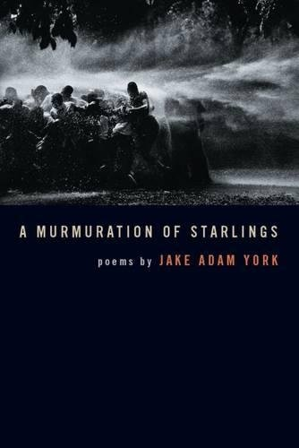 A Murmuration of Starlings (Crab Orchard Series in Poetry)