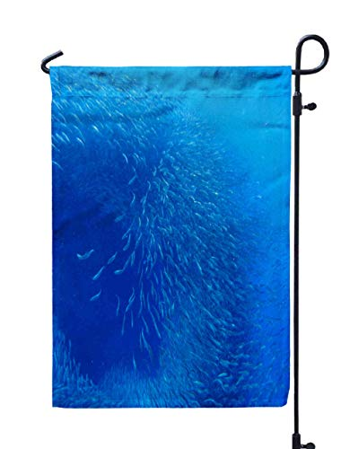 Shorping Welcome Garden Flag, 12x18Inch in Blue Ocean Water Fish School Undersea Photo Silver Swimming Shoal Commercial Fishing Oceanic for Holiday and Seasonal Double-Sided Printing Yards Flags
