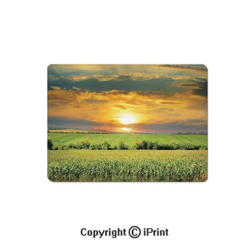 (Anti-Slip Mouse Pad,Corn Field and Sunrise on Summer Sky Natural Paradise Pasture Mourning View Picture Mouse Mat,Non-Slip Rubber Base Mousepad,7.9x9.5 inch,Yellow Green )