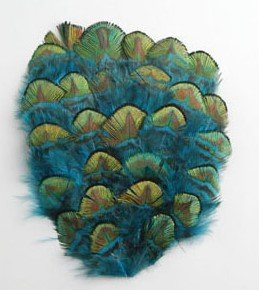 Feather Gold Pad Peacock - 6 Pcs Peacock Feather Pads - Peacock BLUE/GOLD
