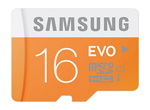 Samsung Memory MicroSDHC without Adapter