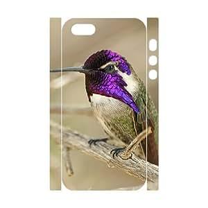 3D Bumper Plastic Customized Case Of Hummingbird for iPhone 5,5S