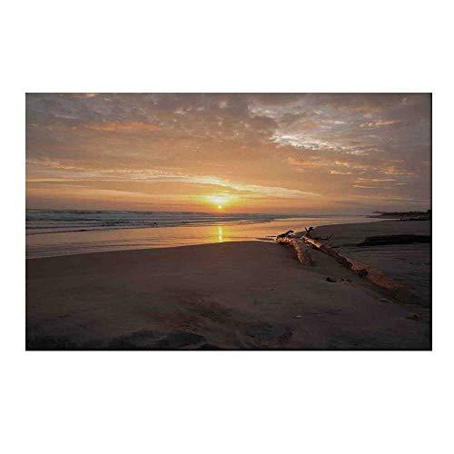 (YOLIYANA Driftwood Decor Durable Door Mat,Golden Sun Rises Over a Distant Horizon Sandy Beach and Driftwood for Home Office,15.7
