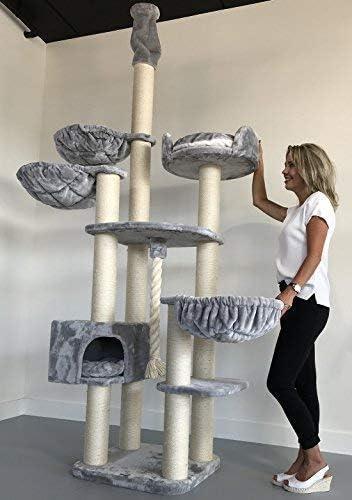Rascador para gatos grandes Catdream de Luxe Gris claro Maine Coon Hasta el altura de Techo Alto de seulo alturo arbol xxl gato gigante sisal casa torre Árboles rascadores con hamaca: Amazon.es:
