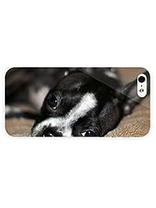 3d Full Wrap Case for iPhone 5/5s Animal Boston Terrier