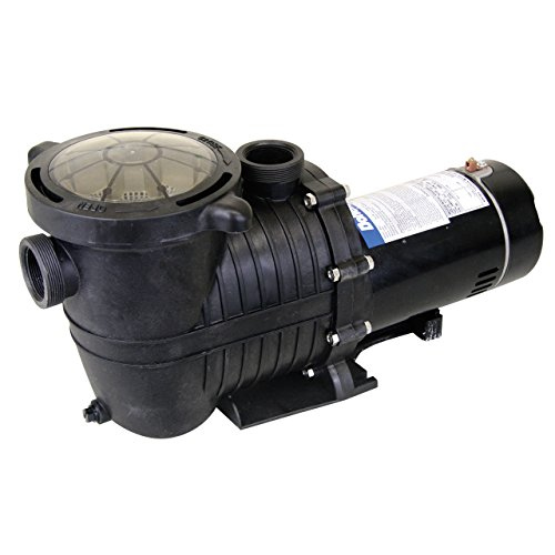 Doheny's Deluxe Above Ground 1 HP 115V Pump