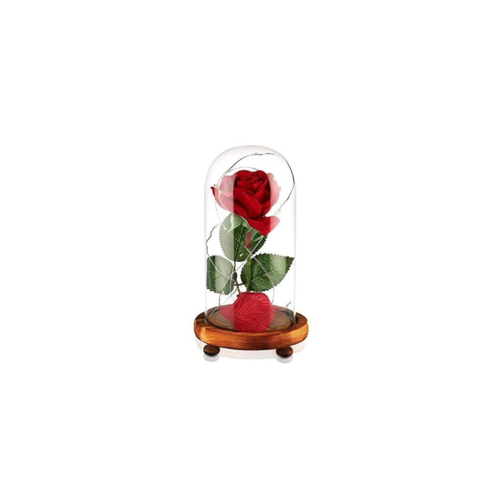 Beauty-and-The-Beast-Rose-Enchanted-Red-Silk-Rose-and-LED-Light-with-Fallen-Petals-in-Glass-Dome-on-a-Wooden-Base-Gift-for-Her-Holiday-Birthday-Party-Wedding-Anniversary-Valentines-Day