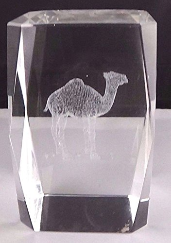 (Garden Of Arts Hot 3D Laser Etched Crystal Camel Figure Jellyfish Paperweight Decor)
