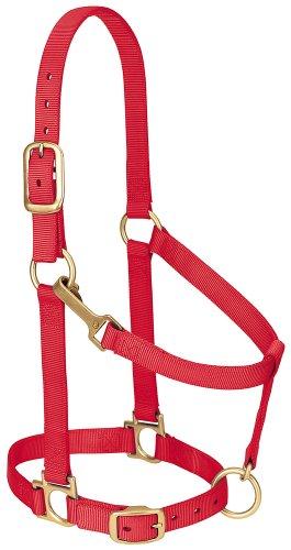 Weaver Leather Basic Adjustable Nylon Halter, Red, 1