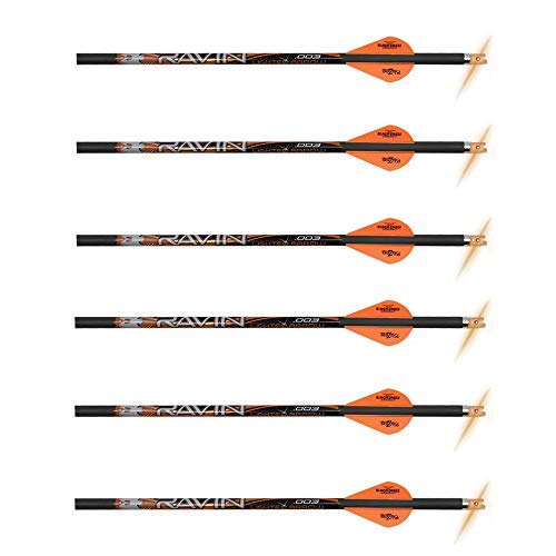 Nock Red Lighted (Ravin Crossbows R133 0.003 400 Grain Lighted Arrows (6 Pack), Black/Red | Carbon | Highly Accurate and Stable)