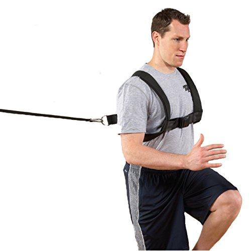 Perform Better Pro Waist Belt Cinch Strap (Cinch Waist Strap)