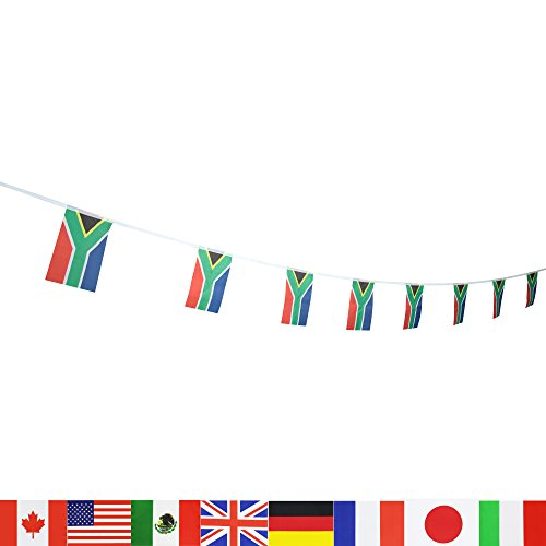 South Africa South African Flag ,LoveVC 100 Feet National Country World String Flags Banners,International Party Decorations Supplies For World Cup,Olympics,Sports (African Countries Flag)