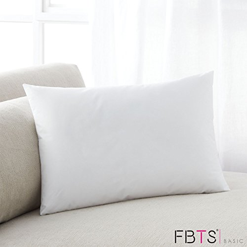 Durable Service FBTS Basic Rectangle Throw Pillow Insert 40x40 Inch Delectable Oblong Pillow Inserts