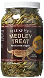 Fluker's Bearded Dragon Medley Treat Food