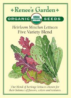 "Lettuce, Mesclun, ""Five Variety Blend"" Heirloom - Certified Organic Seeds"