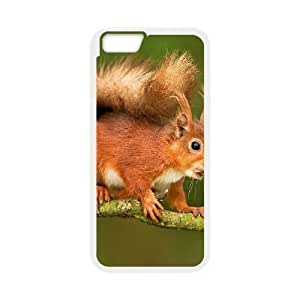 3D Bumper Plastic Case Of Orange customized case For Iphone 4/4s