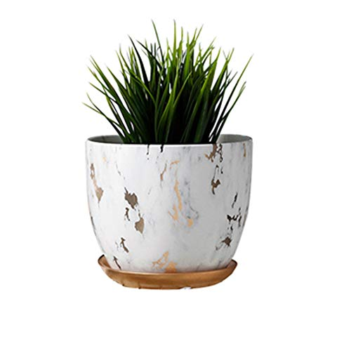 Marble Plant Pot, 6 inch Modern ...
