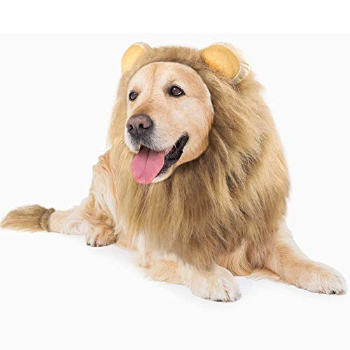 GALOPAR Lion Mane for Dogs Realistic Lion