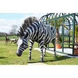 "Pintado a mano Zebra de ""Kalahari Cape Escultura de jardín"