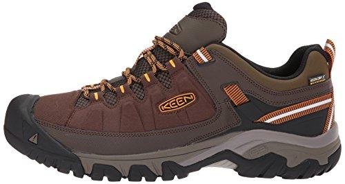 Cascade Hommes Keen Gold lvation Basse Chaussures Targhee Inca Pour De Exp Randonne Wp rqrvx0w