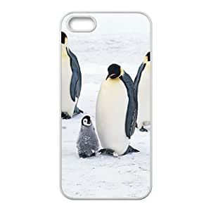 Customized case Of Penguin Hard Case for iPhone 5,5S by icecream design
