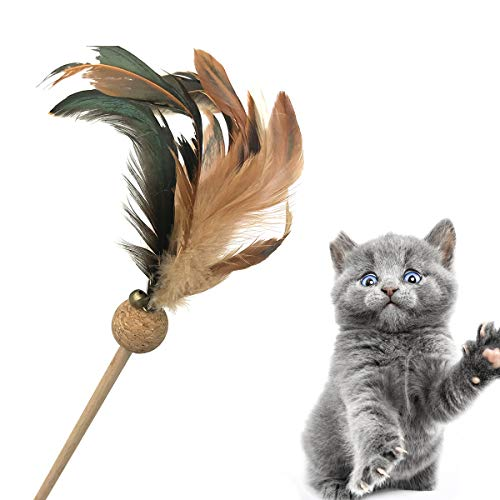 Cataria Best Kitten Toys - Wooden Cat Teaser Feather Teaser Wand 2pc by Cataria