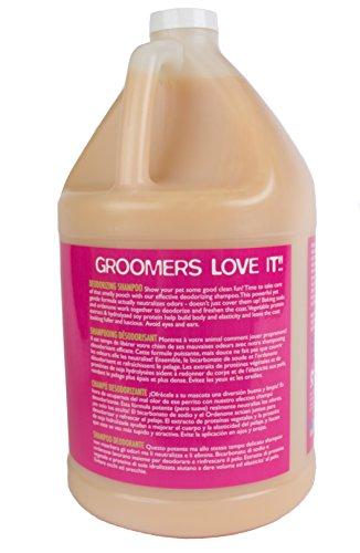 The Company of Animals Dirty Talk Shampoo, 3.79 Litre Yummy Orange 2