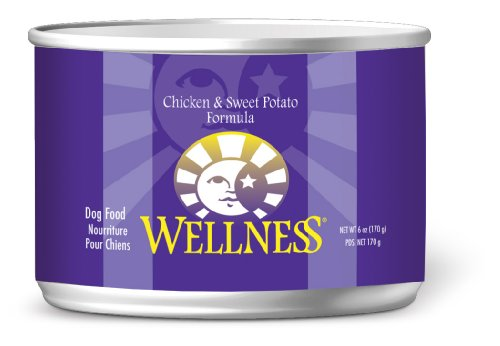 Wellness Canned Dog Food for Adult Dogs, Chicken and Sweet Potato Recipe, 24-Pack of 6-Ounce Cans, My Pet Supplies
