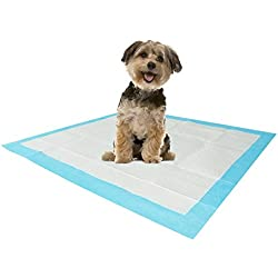 Stella Puppy Training UnderPads Super Absorbent Large Doggie Pet Incontinence Bedding and Furniture Protection Disposable Pad 22 x 23, 100 Count.