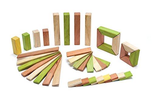 40 Piece Tegu Explorer Magnetic Wooden Block Set, Jungle