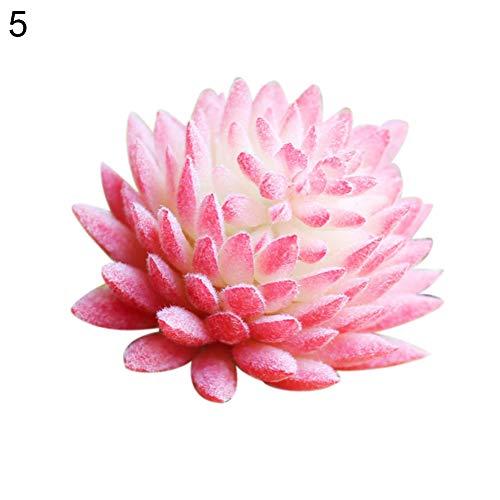 CHoppyWAVE 1Pc Artificial Succulent Plant Plastic Echeveria Mini Bonsai Home Office Decor - ()