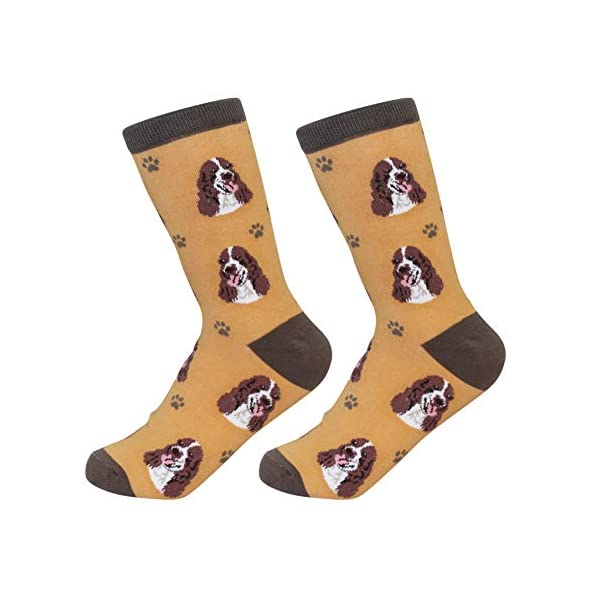 Springer Spaniel Socks - Soft Combed Cotton - One Size Fits Most 1