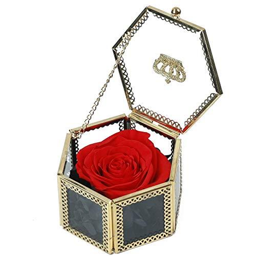 Preserved Fresh Flower, Red Rose, Handmade Preserved Rose Present, Exquisite Fresh Roses Upscale Immortal Flowers Best Gift for Female Birthday, Anniversary, ()