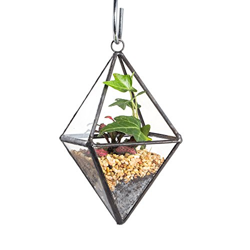 Mini Clear Glass Octahedron Shape Diamond Geometric Air Plant Terrarium Wall Hanging Pot Planter Vase Side Length 3x3.5inches (5.9 inches with loop) Micro Minis Stained Glass