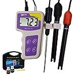 3 In 1 PH MV ORP Temperatura Redox Meter, Elettrodi Rimovibile Portatile Di Qualità Dell'acqua Del Tester Termometro… 41hfeow5ITL. SS150