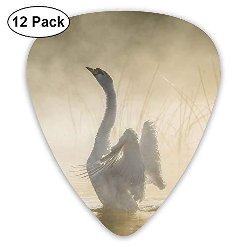 Classic Guitar Pick (12 Pack) Lake Swan Player's Pack for Electric Guitar,Acoustic Guitar,Mandolin,Guitar Bass ()