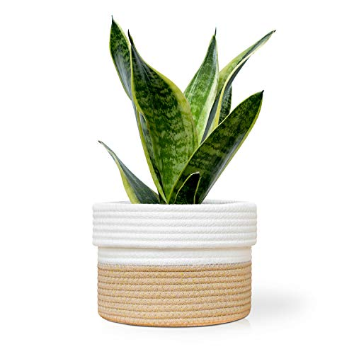 Oasis Valley Cotton Rope Plant Basket for 6 Inch Indoor Plant and Flower Pots (Brown and White) (6 Inch Basket)