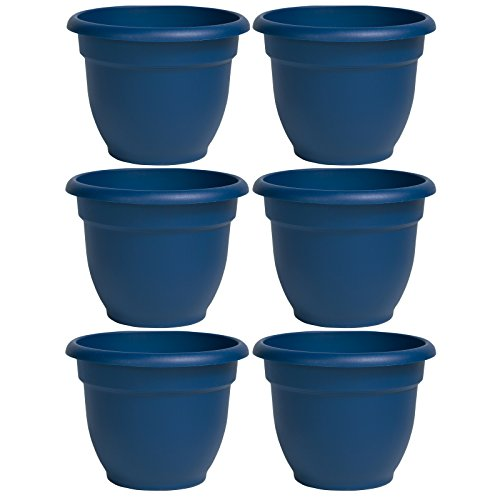 Bloem Ariana Self Watering Planter, 12″, Deep Sea (AP1231) (6 Pack)