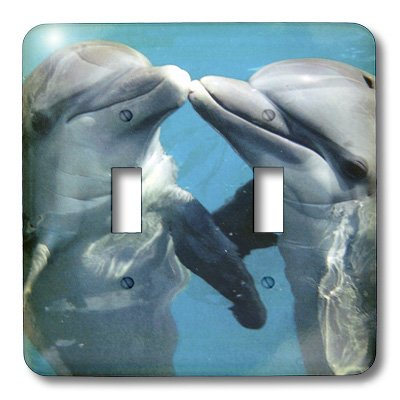 3dRose LLC lsp_8608_2 Dolphin Play, Double Toggle Switch