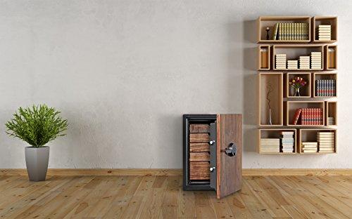 Phoenix DBAUM Fingerprint Lock Luxury Fireproof Safe with Walnut Door 2.28 cu ft by Phoenix Safe International (Image #7)
