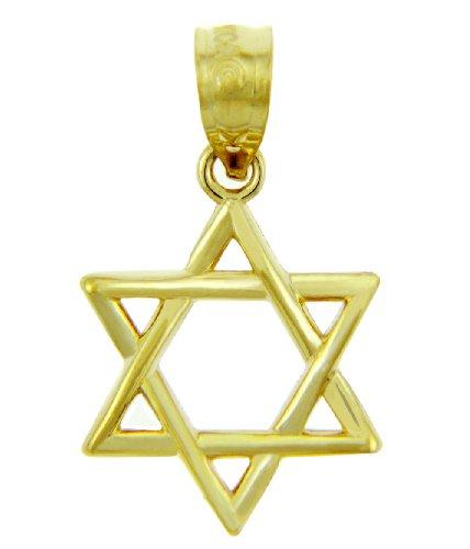 Mezuzah Polished Pendant (14k Gold Jewish Charm Star of David Pendant)