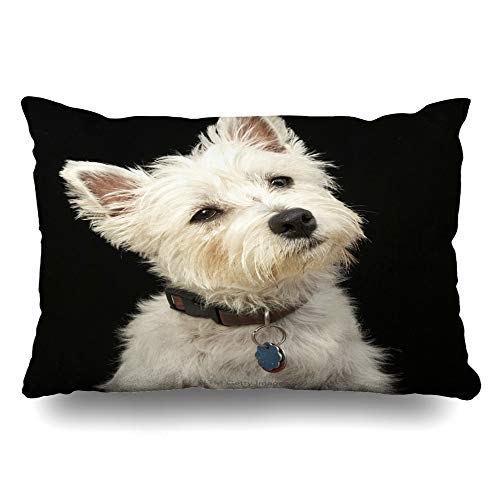 - InnoDIY Throw Pillow Covers Westie West Highland Terrier with Collar Pillowslip Queen Size 20