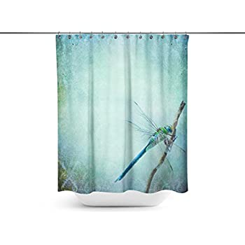 Amazon Com Vintage Shabby Chic Background With Dragonfly