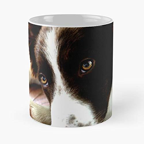 Border Collie Pup Dog Mans Best Friend Gift Coffee/tea Ceramic Mug 11 Oz