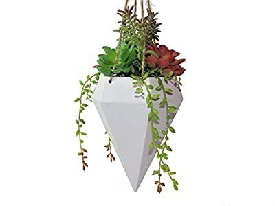 Linico Beautiful Lifelike Fake Succulent Plants in Pot Plant Hanger, Elegance Faux Succulent Hanging Planter for Decoration, Assorted Colorful Artificial Succulent Plants with String of Pearls,