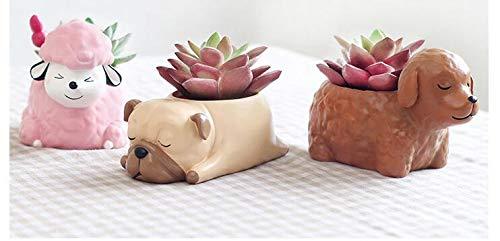 Small plant pots 8//8.5cm