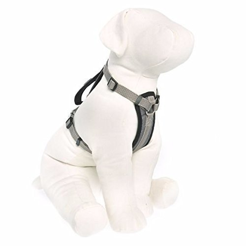KONG Comfort Padded Harness Gray Medium